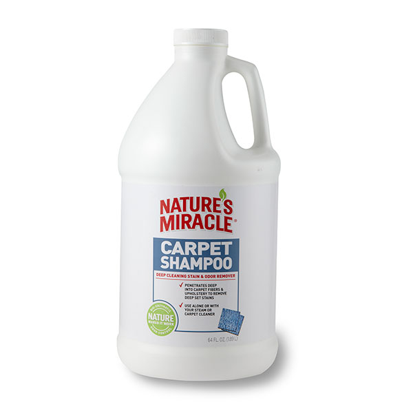 For pet stains and odor in your carpet, try Nature's Miracle Deep Cleaning Carpet Shampoo.
