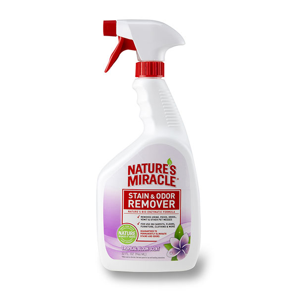 Scented Pet Stain & Odor Remover